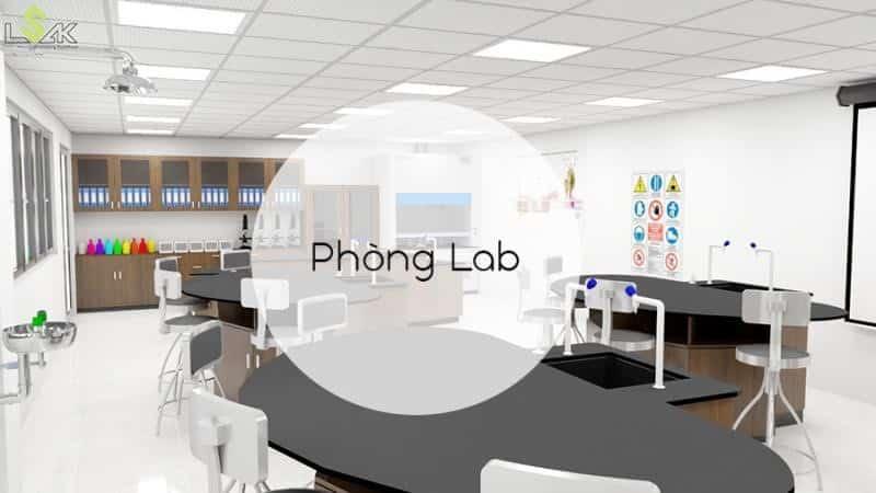 phòng lab là gì?